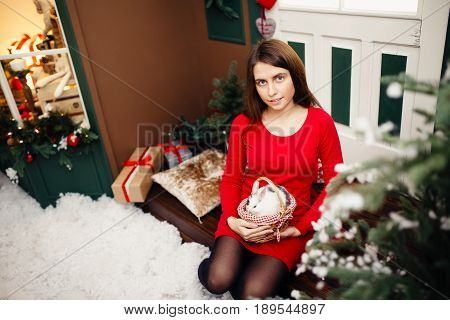 European girl in red dress hold in arms little white rabbit with grey area against the backdrop of New Year's tree. Concept is preparation for new year, New Year's gift