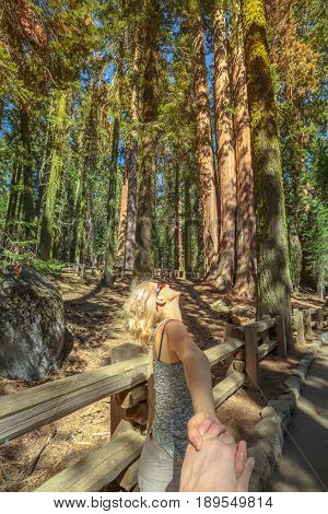 Walking in Sequoia National Park hand in hand. Summer travel freedom woman in Sequoia forest. National Park, California, United States. Summer traveler concept. California round trip.