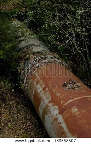 Rusty old turbine pipes  through a spring forest