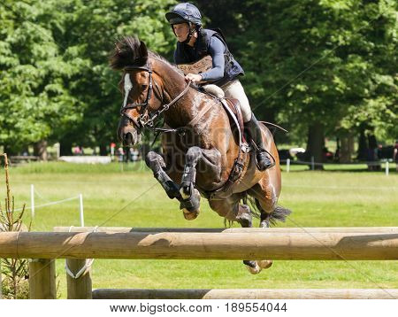 Houghton International Horse Trials Indiana Limpus Riding Bronze Dandylion