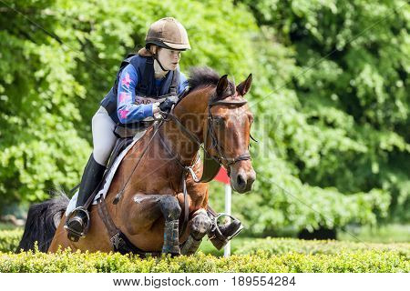 Houghton International Horse Trials Emily Rucker Riding Cesano H