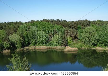 Quiet and calm lake and forest in National Park. Wielkopolski Park Narodowy.