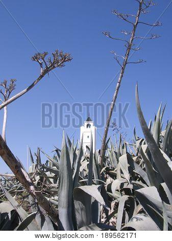 A white church tunis against a blue sky