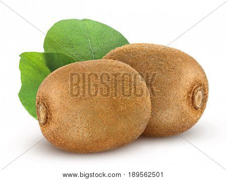 Isolated kiwi fruit. Collection of two whole kiwi isolated on a white background with clipping path.
