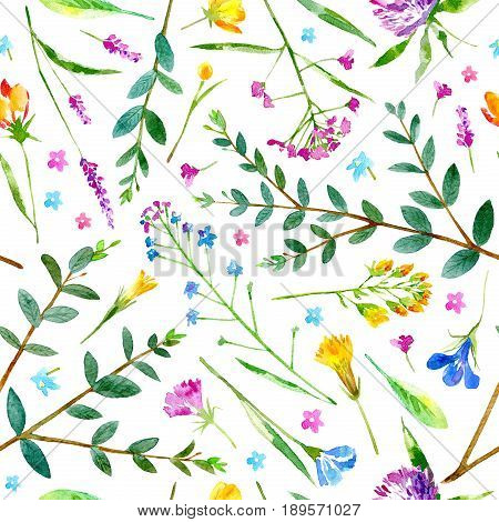 Floral seamless pattern of a wild flowers and eucalyptus on a white background.Buttercup,cornflower,clover,bluebell,forget-me-not,vetch,grass,snowdrop flowers. Watercolor hand drawn illustration.