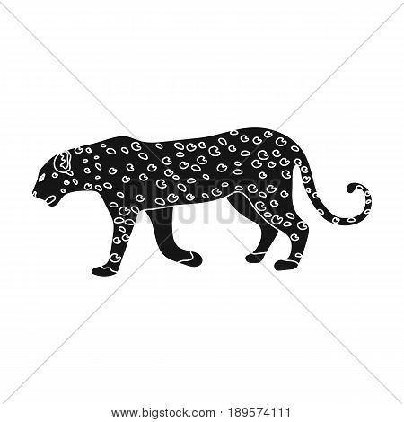 Leopard.African safari single icon in black style vector symbol stock illustration .