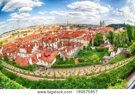 Houses with traditional red roofs and trees in Prague Mala Strana district in the Czech Republic. Fish-eye lens.