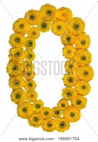 Arabic Numeral 0, Zero, From Yellow Flowers Of Buttercup, Isolated On White Background