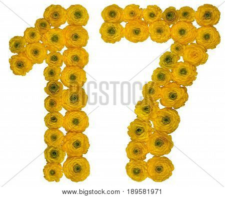 Arabic Numeral 17, Seventeen,  From Yellow Flowers Of Buttercup, Isolated On White Background