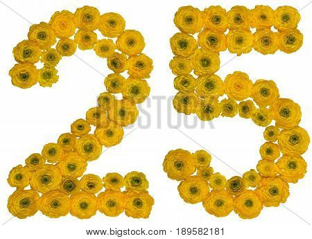 Arabic Numeral 25, Twenty Five, From Yellow Flowers Of Buttercup, Isolated On White Background