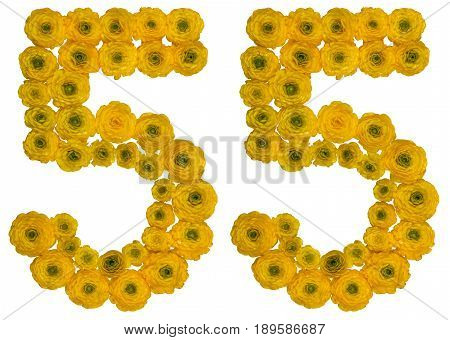 Arabic Numeral 55, Fifty Five, From Yellow Flowers Of Buttercup, Isolated On White Background