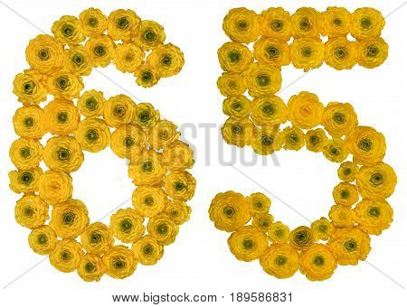 Arabic Numeral 65, Sixty Five, From Yellow Flowers Of Buttercup, Isolated On White Background