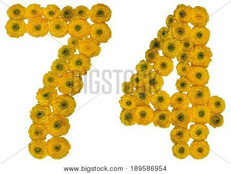 Arabic Numeral 74, Seventy Four, From Yellow Flowers Of Buttercup, Isolated On White Background