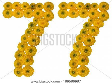 Arabic Numeral 77, Seventy Seven, From Yellow Flowers Of Buttercup, Isolated On White Background