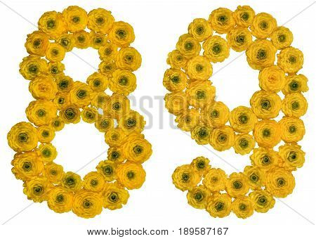 Arabic Numeral 89, Eighty Nine, From Yellow Flowers Of Buttercup, Isolated On White Background