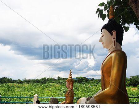 Buddha statue sitting under Bodhi tree with blue sky background