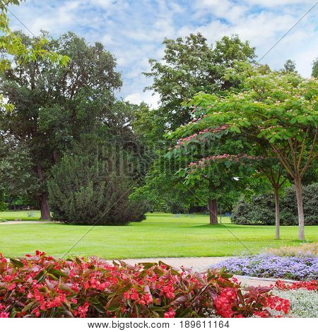 summer park with beautiful flowerbeds and sky