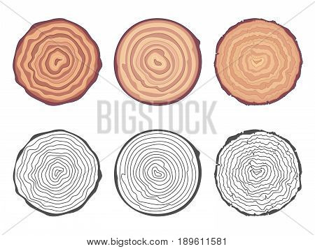 Natural tree rings background saw cut tree trunk design decorative elements set vector illustration
