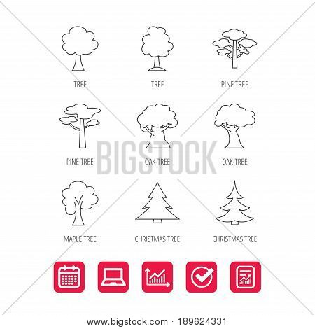 Pine tree, maple and oak icons. Christmas trees linear signs. Forest trees flat line icons. Report document, Graph chart and Calendar signs. Laptop and Check web icons. Vector