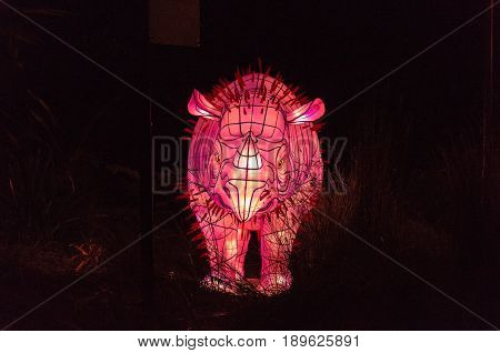 Vivid Sydney At Taronga Zoo Wart Hog Light Sculpture