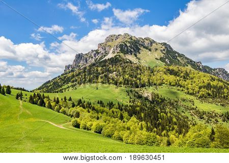 Spring Mountain Landscape With Stony Big Rozsutec Peak