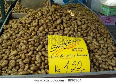 German Outdoor Market