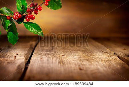 Coffee background, real coffee Plant on wooden table. Empty wood table, Border art design with Red beans on a branch of coffee tree with ripe fruits. Harvest. Roasted beans. Rustic frame design