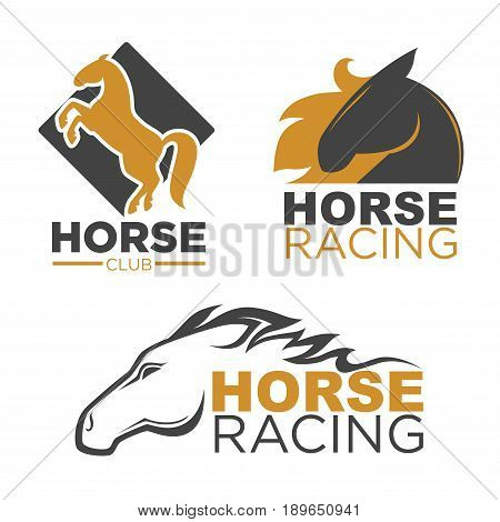 Horse racing logo template. Vector isolated label of prancing racer or rearing mustang and running stallion head for equine sport races or rides and equestrian contest