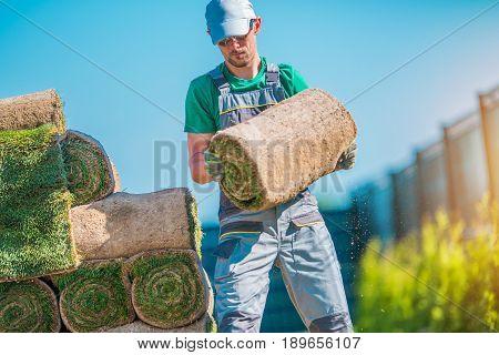 Gardener with Piece of Natural Turf Grass. Grass Installation.