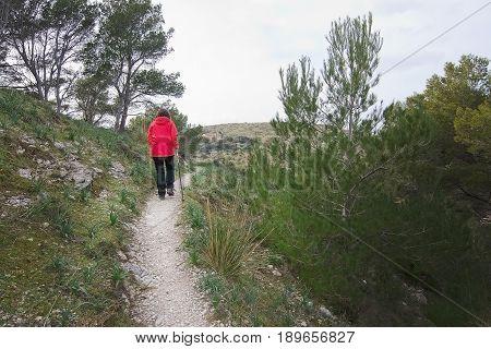 Walkers In Green Spring Mountain Landscape