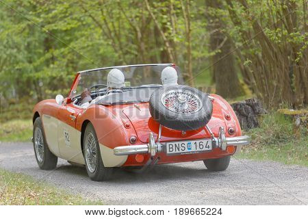 STOCKHOLM SWEDEN - MAY 22 2017: Red and white Austin Healey 100/6 BN4 classic car from 1957 driving on a country road in the public race Gardesloppet in the forests at Djurgarden Stockholm Sweden. May 22 2017