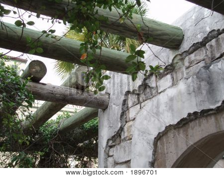 Stone Wall With Arbor