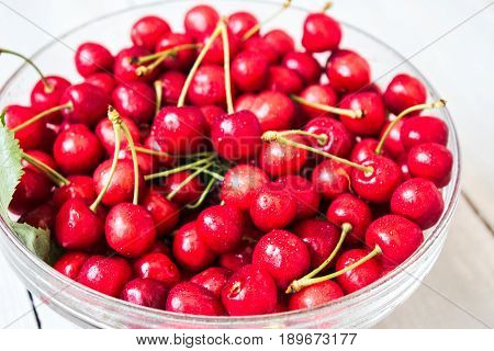 Bunch Of Cherry With Water Drops In The Bowl