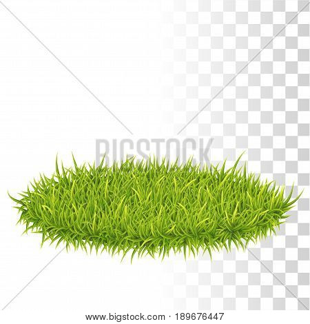 Oval Carpet Of Grass