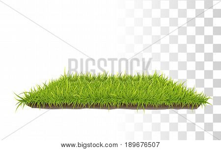 Retangle Carpet Of Grass