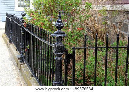 Length of black wrought iron fencing surrounding landscaped garden  outside country home.