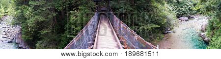 Wooden Suspension Bridge In The Forest Panorama