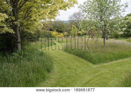 Mowed Paths Through A Garden With Grass And Trees