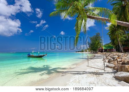 Green palms on a white sandy beach and turquoise waters of the sea. On the tree hung a homemade seesaw.