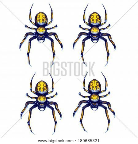 Sprite sheet of crawling spider game art animation of 4 frames