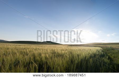 Scenic Tuscany landscape with rolling hills and beautiful cloudscape in Val d'Orcia Italy
