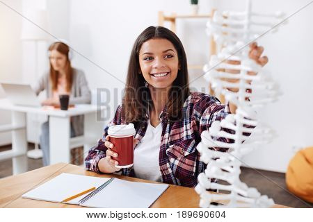 Genetic models. Amazing chromatic ambitious student having a cup of coffee while making a little break during her study of DNA chain