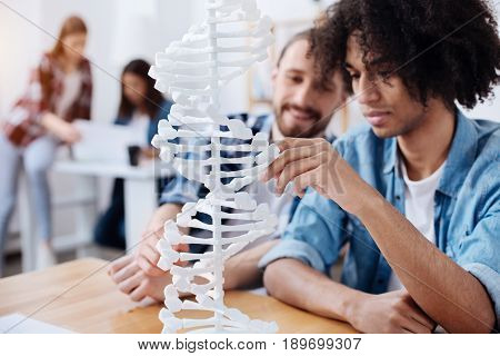Working in small groups. Two motivated interested guys looking at the model of enlarged genome while attending classes in university and getting acquainting with scientific discoveries