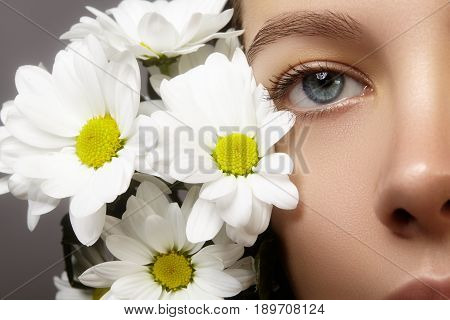 Close-up macro of beautiful female eye with perfect shape eyebrows. Clean skin fashion naturel make-up. Good vision. Spring natural look with chamomile flowers