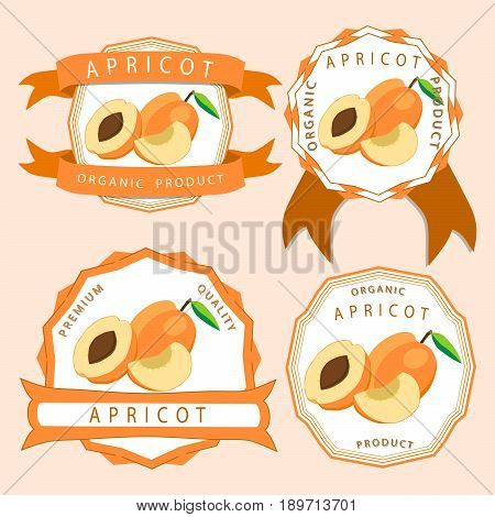 Abstract vector illustration logo for whole ripe fruit apricot with green stem leaf cut sliced background.Apricot drawing consisting of tag label bow peel fruits pip ripe sweet food.Eat fresh apricots