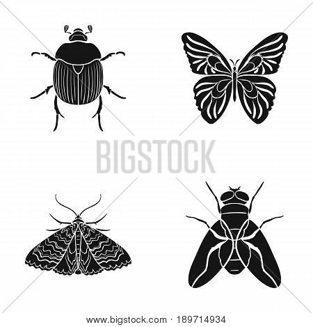 Wrecker, parasite, nature, butterfly .Insects set collection icons in black style vector symbol stock illustration .