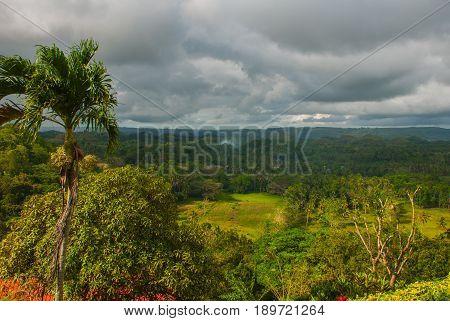 Chocolate Hills And Palma, Bohol Island, Philippines
