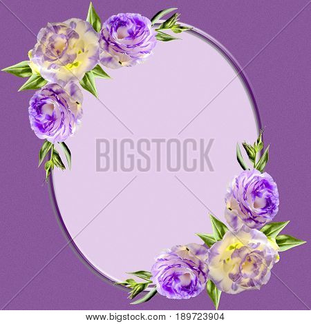 Vintage oval frame decorated with purple eustoma flowers buds and leaves. In center is space for text or photography. Template design of greeting card invitation page or cover of the photoalbum