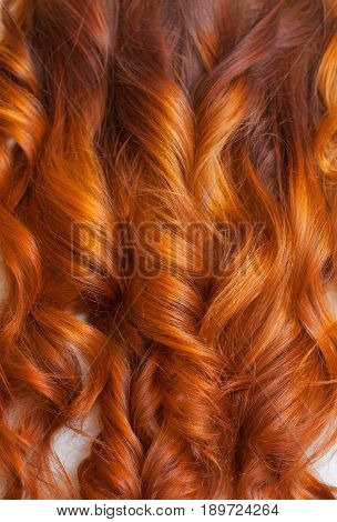 Beautiful healthy long curly red hair close up. Create curls with curling irons. Professional hair care.