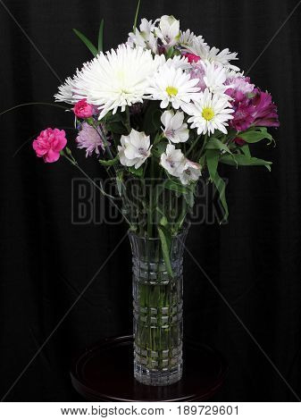 Black curtain behind a tall cut glass vase of colorful flowers and leaves. White pink and violet flowers in a vase close-up in front of a black curtain.